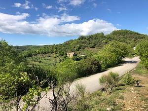 vista frontale del Podere Vallescura quando si arriva dalla Val Tiberina