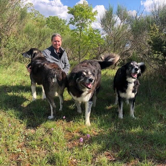 Chackotay, Hitachi e Zecca: i cani del Podere Vallescura